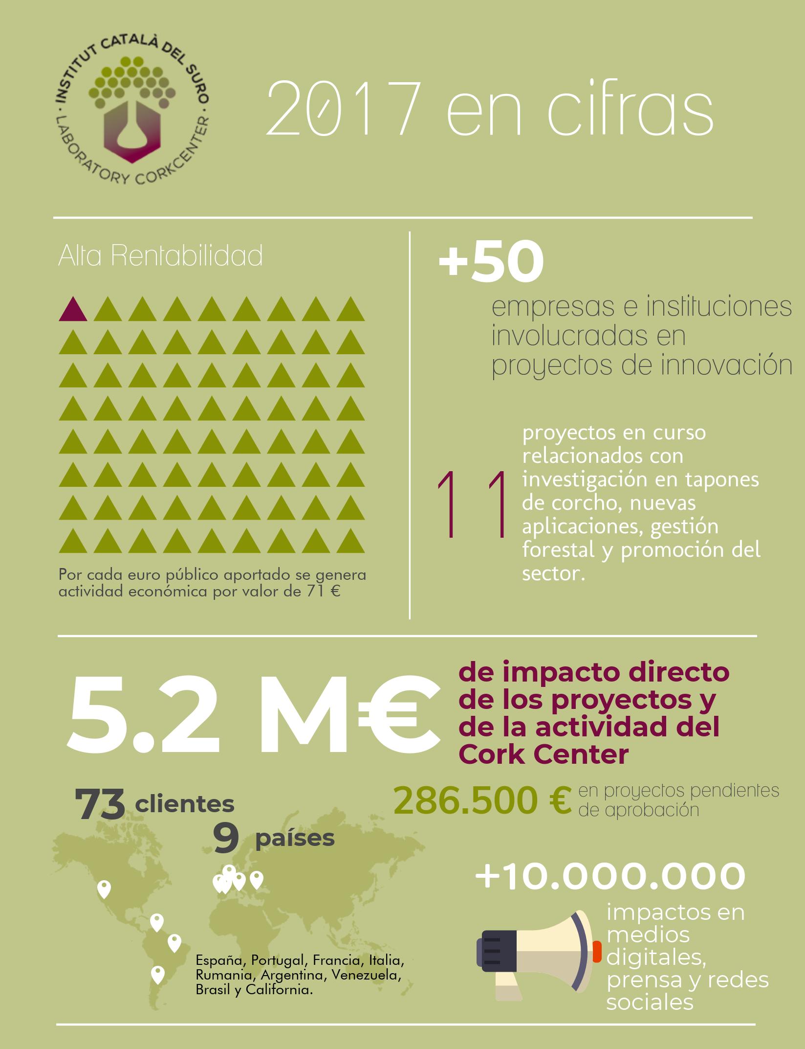 2017 en cifras - ICSuro