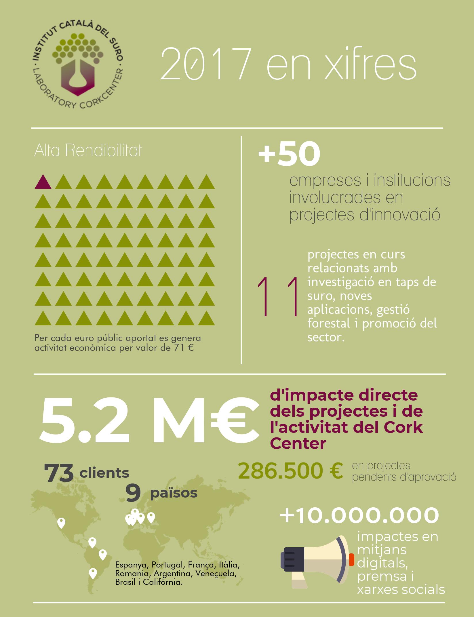 2017 en xifres - ICSuro