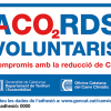 ACORDS VOLUNTARIS ICSURO