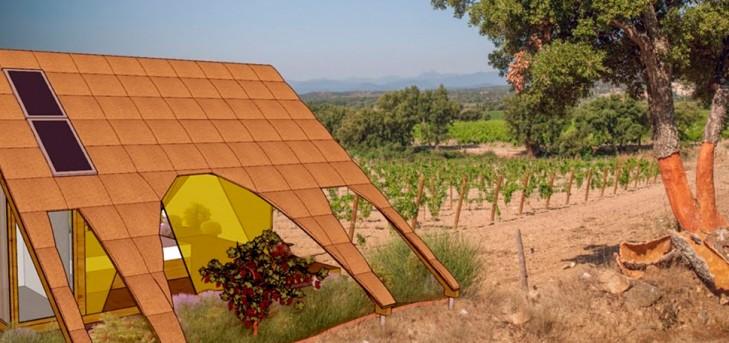 vinifera_suite_tamany