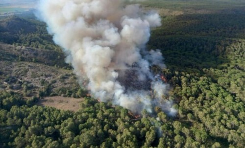 """22-07-2021 Bomberos remojará la zona del incendio estabilizado de Montgrí (Girona), que ha quemado 91 hectáreas, hasta controlarlo.  Els Bombers de la Generalitat remullaran aquest dissabte la zona de l'incendi al massís del Montgrí (Girona), estabilitzat des de divendres a la nit, """"fins que es pugui donar per controlat"""".  ESPAÑA EUROPA CATALUÑA ESPAÑA EUROPA CATALUÑA BARCELONA SOCIEDAD BOMBERS DE LA GENERALITAT"""
